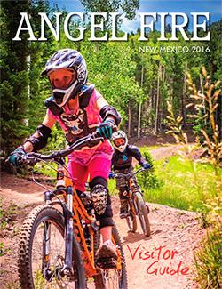 AF-guide-2016-cov